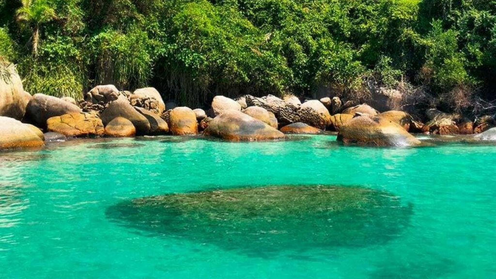 Paraty tem lindas praias, esta tem água limpa, pedras e mata